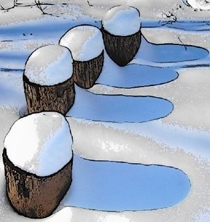 Snow-topped logs (3): photo image copyright Sara Firman (Sulis)