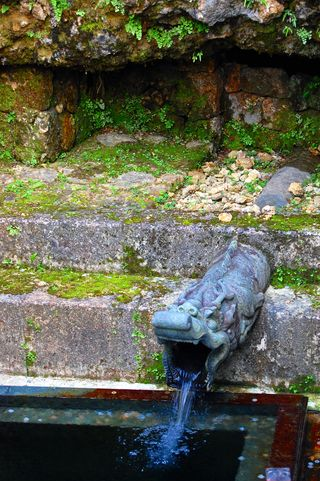 Water Dragon 2012. Image © Mvogel   | Dreamstime.com    http://www.dreamstime.com/shuri-castle-dragon-fountain-imagefree13141108