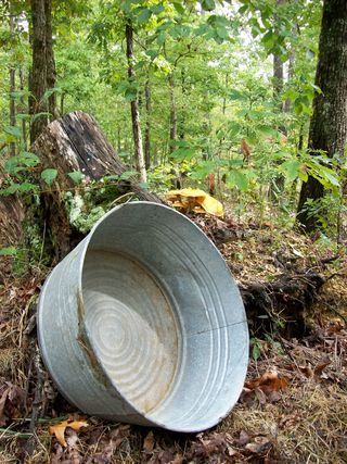 Wash bowl in the woods